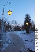 Купить «Елагин дворец. Подъездная аллея», фото № 206840, снято 16 февраля 2008 г. (c) Марина Дмитриевых / Фотобанк Лори