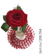 Купить «Одна красная роза на белом фоне», фото № 208764, снято 15 января 2008 г. (c) Останина Екатерина / Фотобанк Лори