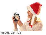 Купить «Канун Нового года», фото № 214172, снято 24 ноября 2007 г. (c) Наталья Белотелова / Фотобанк Лори