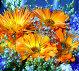 Яркие цветы, фото № 214816, снято 24 января 2017 г. (c) ElenArt / Фотобанк Лори