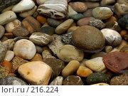 Купить «Камни», фото № 216224, снято 7 сентября 2007 г. (c) Юлия Нечепуренко / Фотобанк Лори