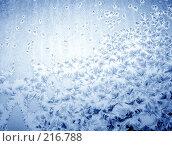 Купить «Зимний узор», фото № 216788, снято 21 ноября 2018 г. (c) ElenArt / Фотобанк Лори