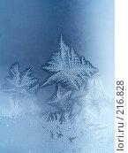 Купить «Морозный узор», фото № 216828, снято 21 ноября 2018 г. (c) ElenArt / Фотобанк Лори