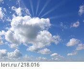Купить «Солнечные лучи», фото № 218016, снято 16 сентября 2019 г. (c) ElenArt / Фотобанк Лори