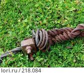 Купить «Ржавая арматура на траве», фото № 218084, снято 19 сентября 2018 г. (c) ElenArt / Фотобанк Лори