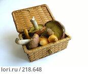 Купить «Съедобные грибы в плетеном коробе», фото № 218648, снято 23 сентября 2018 г. (c) ElenArt / Фотобанк Лори