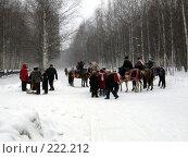 Купить «Конный аттракцион», фото № 222212, снято 24 февраля 2008 г. (c) Нурулин Андрей / Фотобанк Лори