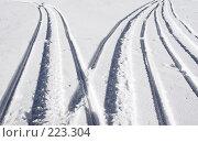Купить «Вам направо, нам налево», фото № 223304, снято 9 марта 2008 г. (c) Анатолий Теребенин / Фотобанк Лори