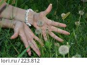 Купить «Забота и любовь», фото № 223812, снято 23 июля 2005 г. (c) Вадим Лигай / Фотобанк Лори