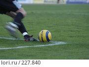 Купить «Футбольный вратарь вводит мяч в игру ударом от ворот», фото № 227840, снято 10 сентября 2005 г. (c) Виктор Филиппович Погонцев / Фотобанк Лори