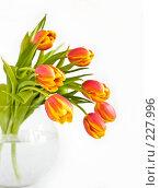 Купить «Букет красно-желтых тюльпанов в стеклянной вазе на белом фоне, малая глубина резкости», фото № 227996, снято 8 марта 2008 г. (c) Ольга Хорькова / Фотобанк Лори