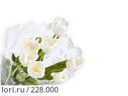 Купить «Букет белых тюльпанов», фото № 228000, снято 8 марта 2008 г. (c) Ольга Хорькова / Фотобанк Лори