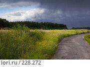 Купить «Летний дождь», эксклюзивное фото № 228272, снято 19 июля 2006 г. (c) Александр Алексеев / Фотобанк Лори