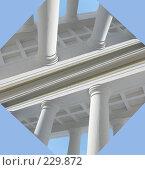 Купить «Белые колонны #2», фото № 229872, снято 16 марта 2008 г. (c) Илья Телегин / Фотобанк Лори