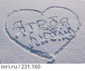 Купить «Сердце на снегу», фото № 231160, снято 8 февраля 2008 г. (c) Сергей Кандауров / Фотобанк Лори