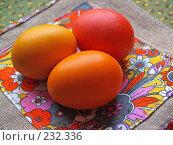 Купить «Пасхальные яйца на цветной льняной салфетке», фото № 232336, снято 25 января 2007 г. (c) only / Фотобанк Лори