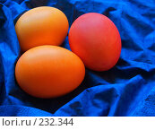 Купить «Яйца крашеные пасхальные на синем фоне», фото № 232344, снято 25 января 2007 г. (c) only / Фотобанк Лори