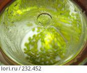 """Купить «Водяная """"корона"""" на поверхности воды, в которой лежат бобовые», фото № 232452, снято 23 марта 2008 г. (c) Заноза-Ру / Фотобанк Лори"""