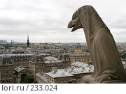 Купить «Взгляд на Париж. Вид с Собора Парижской богоматери.», фото № 233024, снято 7 мая 2007 г. (c) Юлия Кузнецова / Фотобанк Лори
