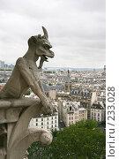 Купить «Взгляд на Париж. Вид с Собора Парижской богоматери.», фото № 233028, снято 7 мая 2007 г. (c) Юлия Кузнецова / Фотобанк Лори