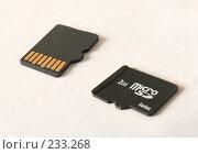 MicroSD (2008 год). Редакционное фото, фотограф Евгений Р / Фотобанк Лори