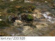 Купить «Абхазия. Горная река», фото № 233920, снято 1 августа 2005 г. (c) Виктор Филиппович Погонцев / Фотобанк Лори