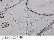 Купить «Следы на снегу», фото № 234464, снято 26 марта 2008 г. (c) Ольга Хорькова / Фотобанк Лори