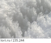 Купить «Снег», фото № 235244, снято 16 августа 2018 г. (c) griFFon / Фотобанк Лори