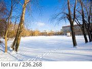 Купить «Прекрасный зимний день», фото № 236268, снято 22 февраля 2008 г. (c) Валерия Потапова / Фотобанк Лори