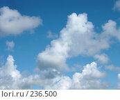 Купить «Небо», фото № 236500, снято 7 июля 2004 г. (c) Olya&Tyoma / Фотобанк Лори
