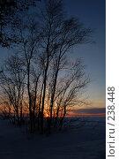 Купить «Закат», фото № 238448, снято 23 января 2019 г. (c) Шемякин Евгений / Фотобанк Лори