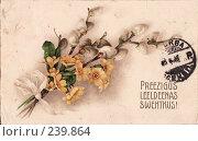 Купить «Пасхальная открытка - букет из вербы и первоцветов с жёлтой лентой», фото № 239864, снято 20 февраля 2019 г. (c) Алла Матвейчик / Фотобанк Лори