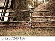 Купить «Деревянный забор , соломенная куча», фото № 240136, снято 21 октября 2007 г. (c) Виноградов Илья Владимирович / Фотобанк Лори