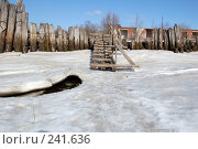 Лестница. Стоковое фото, фотограф Шемякин Евгений / Фотобанк Лори