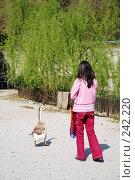 Купить «Девочка и гусь», фото № 242220, снято 27 марта 2008 г. (c) Лифанцева Елена / Фотобанк Лори