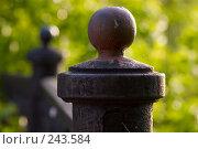 Купить «Старый чугунный литой шар на ограде в лучах заходящего солнца», фото № 243584, снято 2 июня 2007 г. (c) Harry / Фотобанк Лори