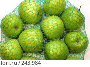 Купить «Сетка с яблоками», фото № 243984, снято 6 апреля 2008 г. (c) ФЕДЛОГ / Фотобанк Лори