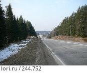 Купить «Латвия, магистраль Рига-Псков через реку Амата», фото № 244752, снято 4 апреля 2008 г. (c) maruta bekina / Фотобанк Лори
