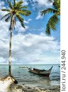 Купить «Морской тропический пейзаж с лодкой на берегу. Индонезия. Остров Мабул», фото № 244940, снято 18 марта 2008 г. (c) Татьяна Белова / Фотобанк Лори