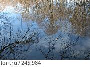 Отражение осени. Стоковое фото, фотограф Игорь Романов / Фотобанк Лори