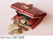 Купить «Кошелёк и деньги», эксклюзивное фото № 247868, снято 8 апреля 2008 г. (c) Дмитрий Неумоин / Фотобанк Лори