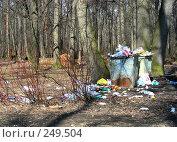 """Купить «Москва. Свалка  мусора в лесу """"Лосиный остров"""".», эксклюзивное фото № 249504, снято 2 апреля 2008 г. (c) lana1501 / Фотобанк Лори"""