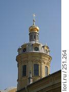 Купить «Санкт-Петербург.  Петропавловский собор. Фрагмент», фото № 251264, снято 5 апреля 2008 г. (c) Александр Секретарев / Фотобанк Лори