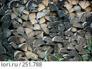 Купить «Поленница дров», фото № 251788, снято 18 июля 2005 г. (c) Смыгина Татьяна / Фотобанк Лори
