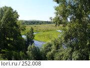 Купить «Летнее пастбище», фото № 252008, снято 26 июля 2007 г. (c) Сергей Девяткин / Фотобанк Лори