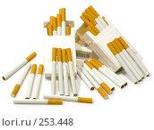 Купить «Сигареты с фильтром на белом фоне», фото № 253448, снято 16 апреля 2008 г. (c) Коннов Леонид Петрович / Фотобанк Лори