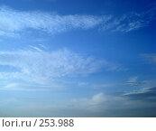 Купить «Перистые облака», фото № 253988, снято 14 апреля 2008 г. (c) Татьяна Богатова / Фотобанк Лори
