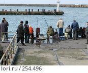Купить «Рыбаки и кот», фото № 254496, снято 17 марта 2008 г. (c) Олег Дрыго / Фотобанк Лори