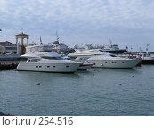 Купить «Моторные яхты», фото № 254516, снято 17 марта 2008 г. (c) Олег Дрыго / Фотобанк Лори