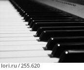 Купить «Клавиатура фортепиано крупным планом», фото № 255620, снято 15 августа 2018 г. (c) Вадим Аносов / Фотобанк Лори